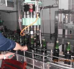 丽水2000瓶/小时菊花盖灌装压盖生产线